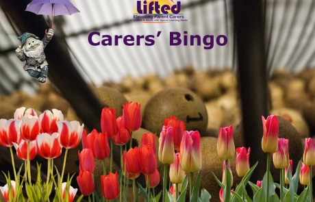 Lifted Carers' Spring Bingo 2018 teaser | original images from pixabay.com