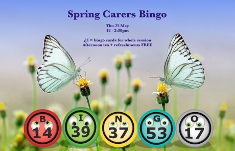 Poster for Lifted's Carers' Spring Bingo and Thursday Social 2019 | background image: 2 butterflies perched on flower shoots; foreground images: bingo balls | original images from pixabay.com